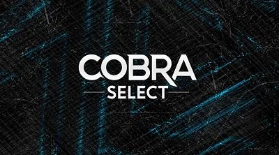 линейка смеси cobra Select